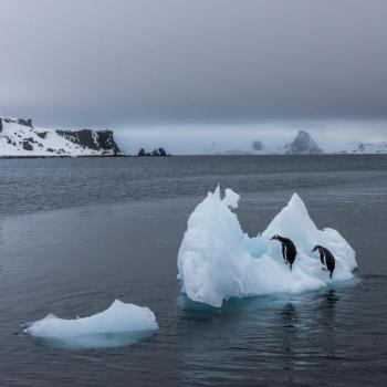 Une banquise Arctique de tous les records en avril !